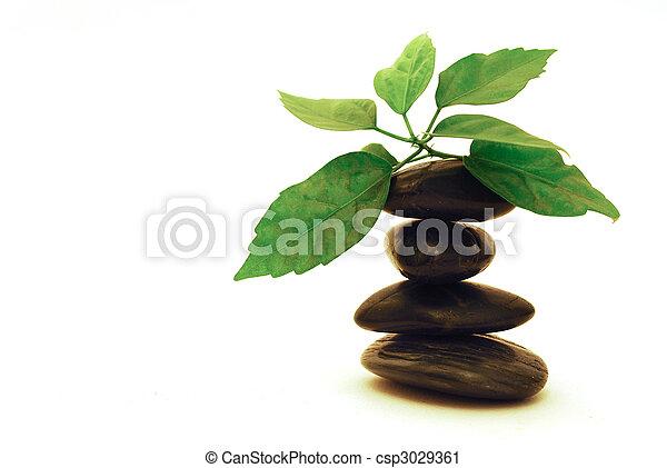 pietre, terme, foglia, verde - csp3029361