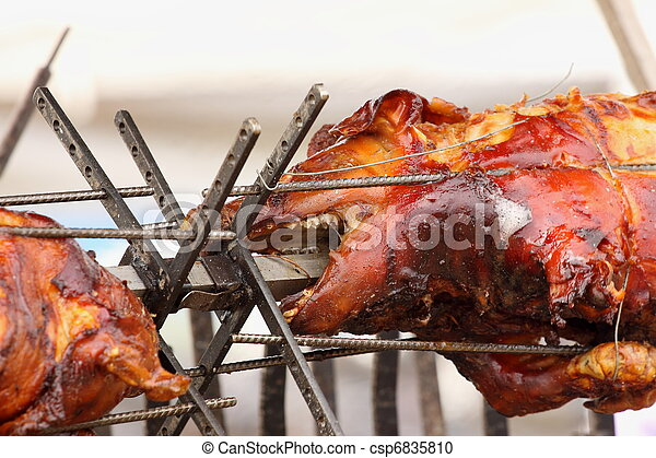 pig on a spit. Spit roasting is a traditional international method of cooking a whole pig. - csp6835810