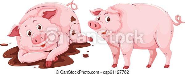 Pig on white background - csp61127782