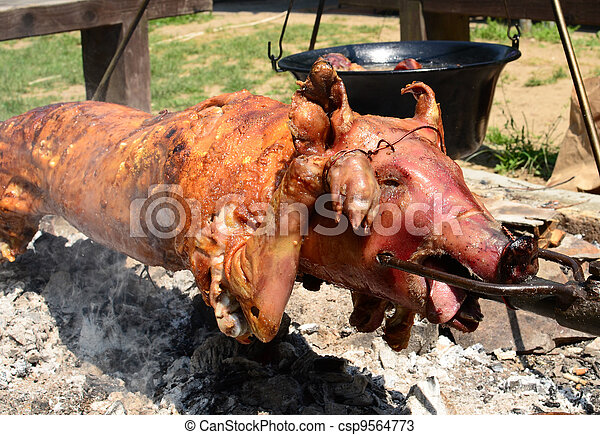 Pig roasted on a fire - csp9564773