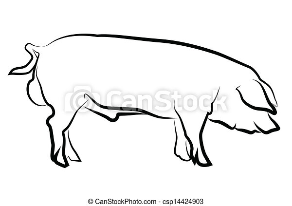 Pig silhouette isolated on white - csp14424903