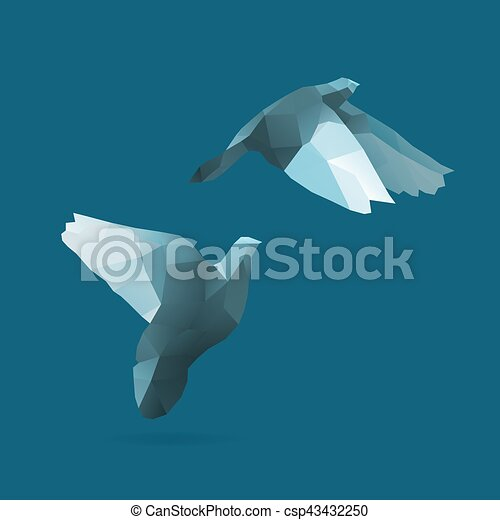 pigeon - csp43432250