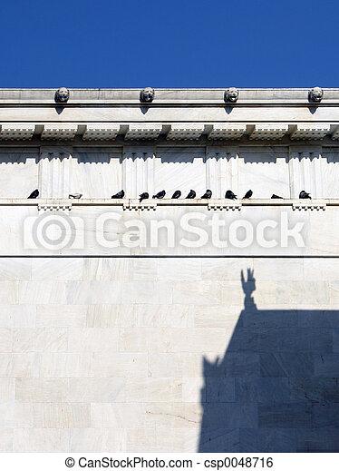 Pigeon debate - csp0048716