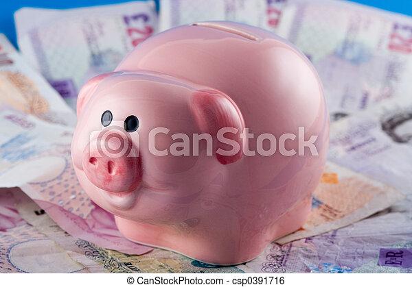 Piggy Bank and Cash - csp0391716