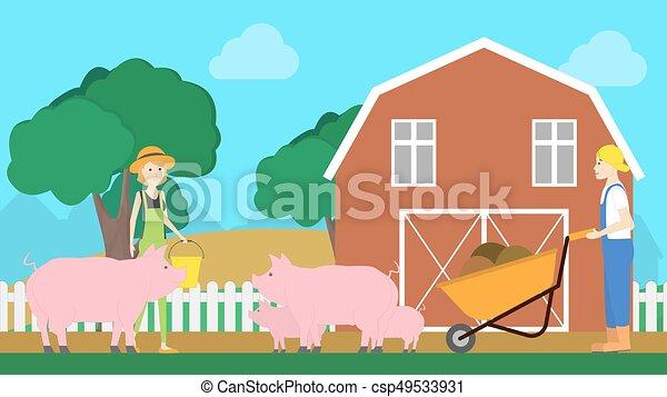 Pigs on farm. - csp49533931
