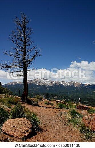 Pike's Peak Lookout - csp0011430