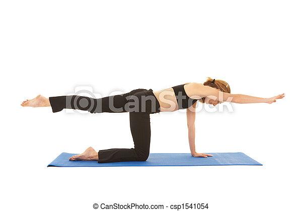 Pilates exercise series - csp1541054