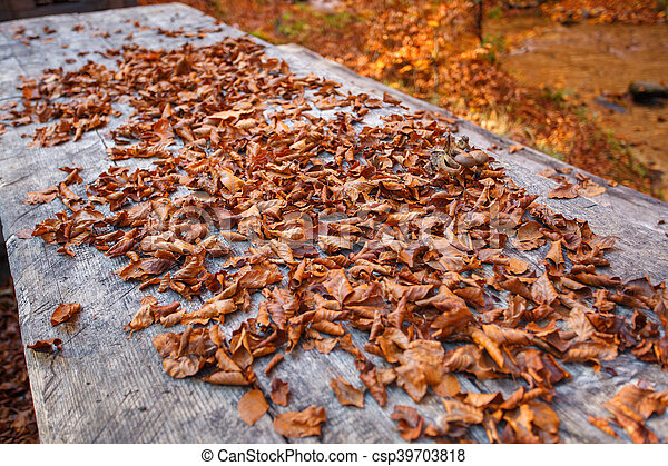 pile of autumn leaves, on a wooden background - csp39703818