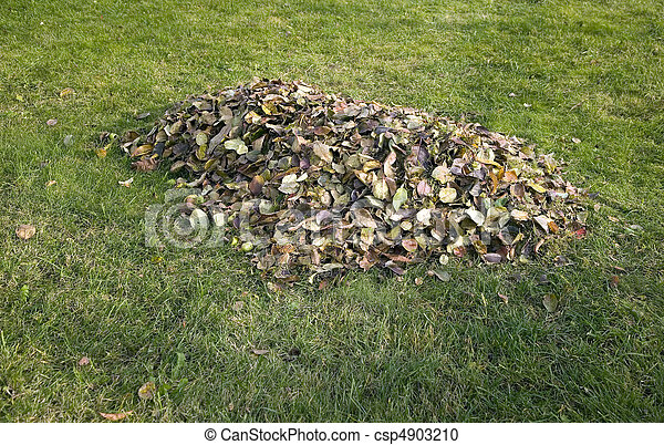 Pile of autumn leaves placed on grass - csp4903210