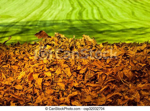pile of autumn leaves - csp32032704