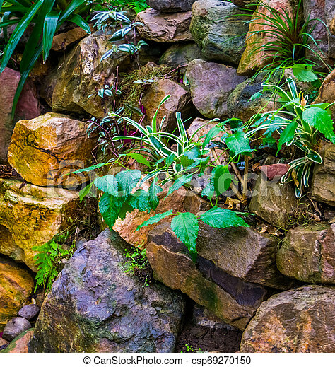 pile of big rocks in a tropical garden, backyard decorations, nature background - csp69270150