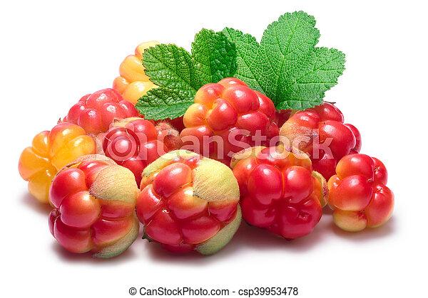 Pile of cloudberries (Rubus Chamaemorus) - csp39953478