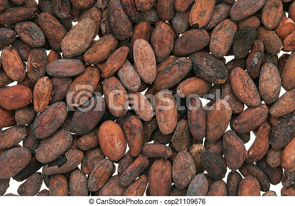 Pile of Cocoa beans - csp21109676