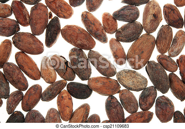 Pile of Cocoa beans - csp21109683
