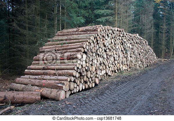 Pile of cutted wood - csp13681748