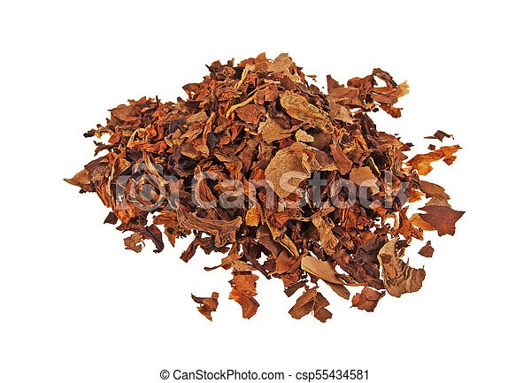 Pile of dried tobacco isolated on a white background - csp55434581
