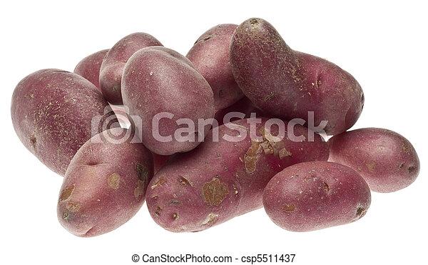 Pile of Red Potatoes - csp5511437