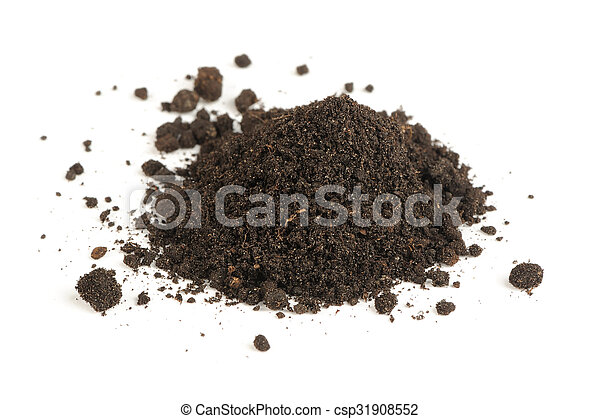 Pile of Soil Isolated on White Background - csp31908552