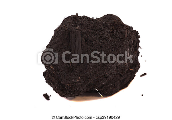 Pile of soil isolated on white background - csp39190429