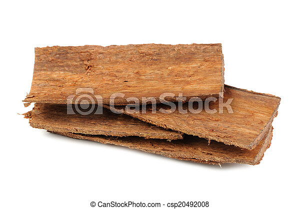 Pile of Tree Bark Pieces Isolated on White Background - csp20492008