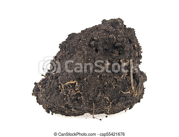 Pile soil isolated on white background - csp55421676