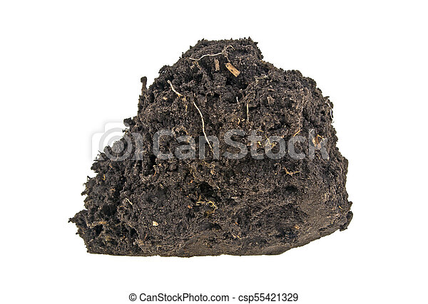 Pile soil isolated on white background - csp55421329
