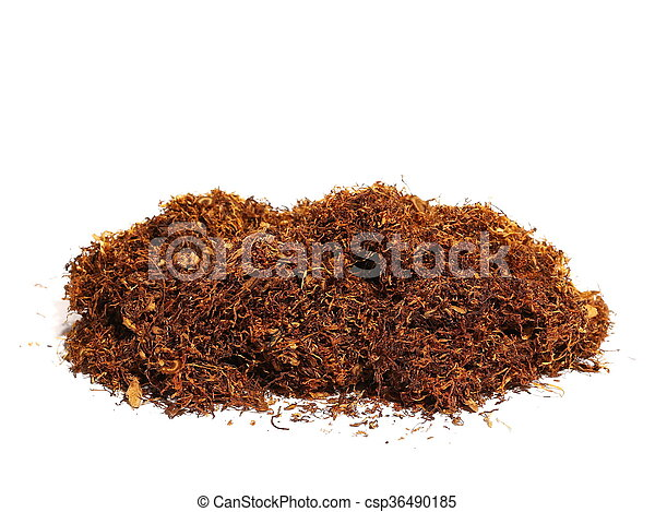 pile tobacco isolated on white - csp36490185