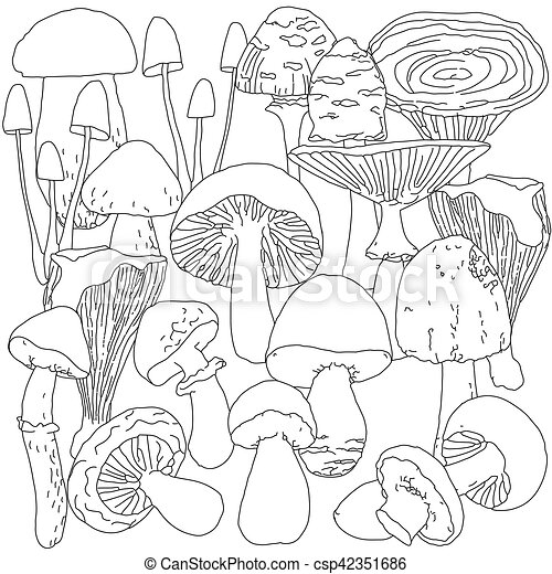 Pilze, färbung, erwachsene, seite Vektor - Suche Clipart ...