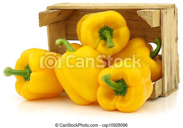 pimentas, (capsicum), amarela, sino - csp10928096