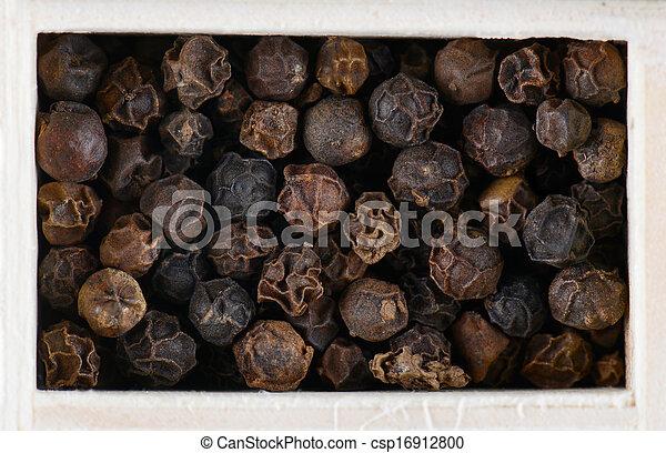 Pimienta negra aislada en fondo blanco - csp16912800