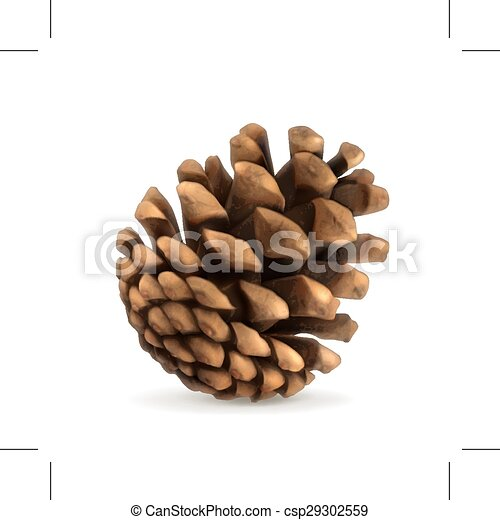 pine cone illustration pine cone vector illustration isolated on rh canstockphoto com pine cone clipart black and white christmas pine cone clipart