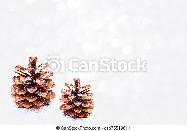 Pine cone in the snow. - csp75519611