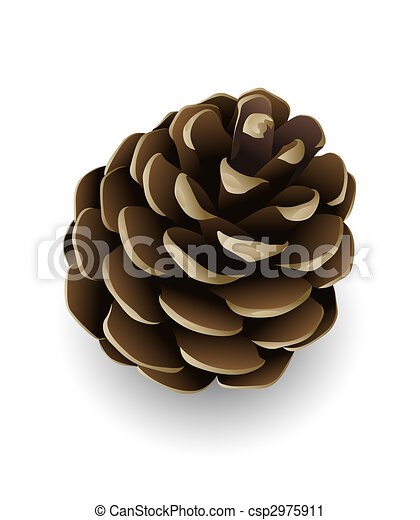 pine cone isolated single pine tree cone isolated illustration rh canstockphoto com pinecone clip art free pine cone clip art