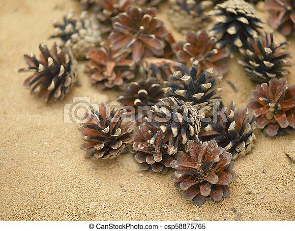 pine tee cones - csp58875765