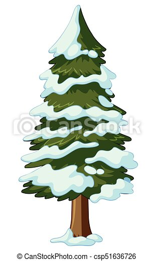 Pine tree covered with snow illustration.