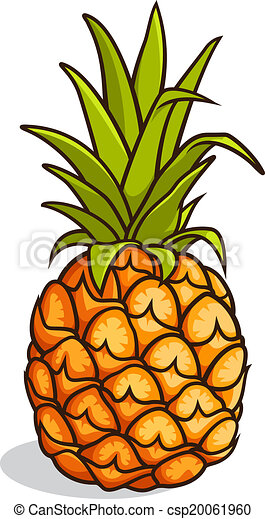 vector illustration of a pineapple isolated on a white clip art rh canstockphoto com pineapple clip art outline pineapple clip art images free