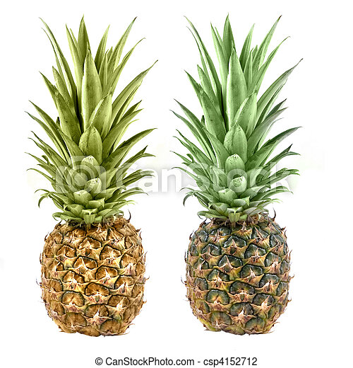 pineapple isolated on white - csp4152712