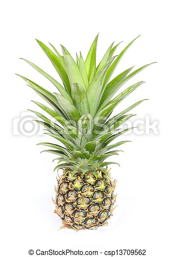 Pineapple on white background. - csp13709562