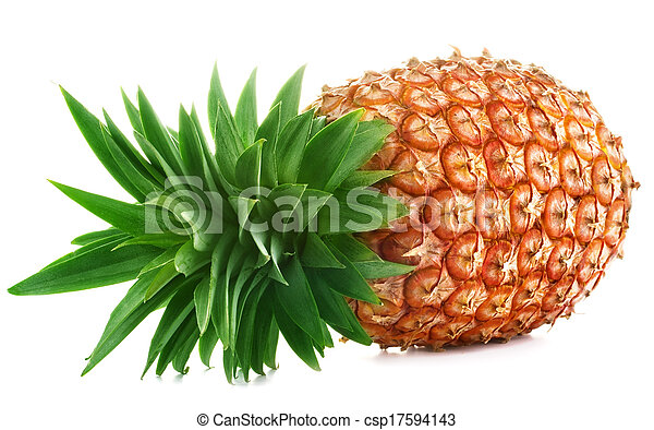 Pineapple on white background - csp17594143