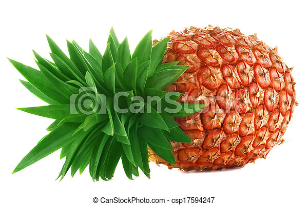Pineapple on white background - csp17594247