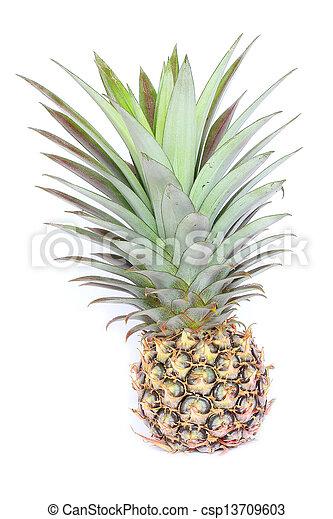 Pineapple on white background. - csp13709603