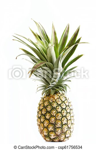 Pineapple on White Background - csp61756534