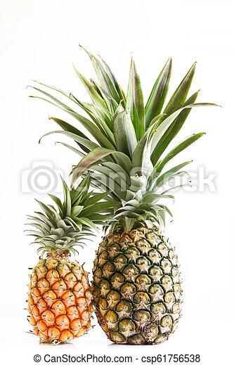 Pineapple on White Background - csp61756538