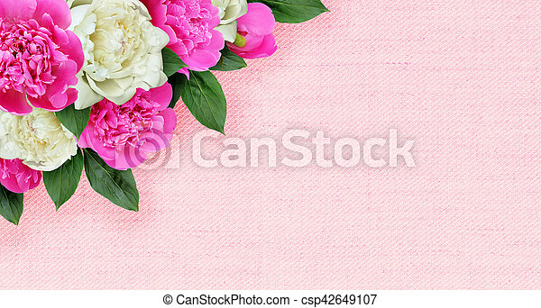 Pink and white peonies flowers corner arrangement on canvas pink and white peonies flowers corner arrangement on canvas csp42649107 mightylinksfo