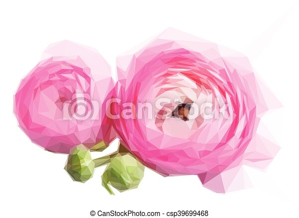 Pink And White Ranunculus Flowers Low Poly Illustration Pink And