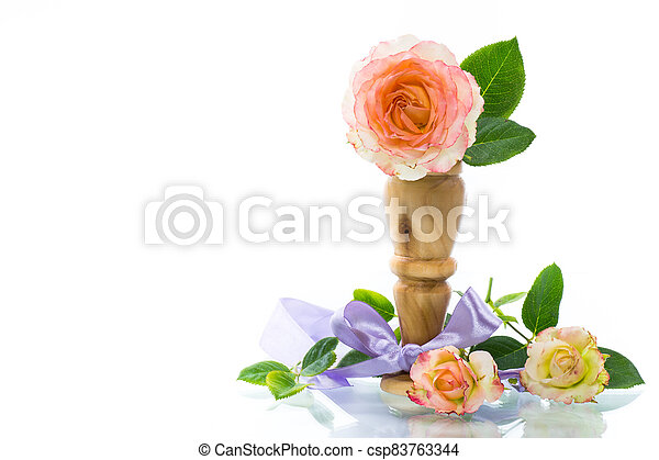 pink beautiful summer roses on white background - csp83763344