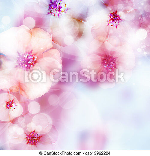 pink blossom and bokeh - csp13962224