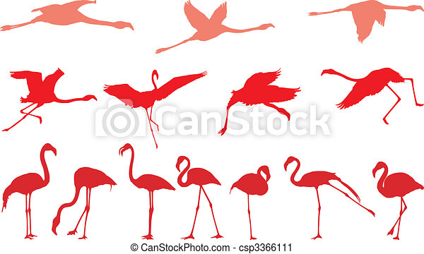 Pink flamingo, a set of vectors - csp3366111