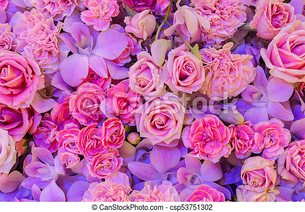 pink flower background of rose carnation and orchid