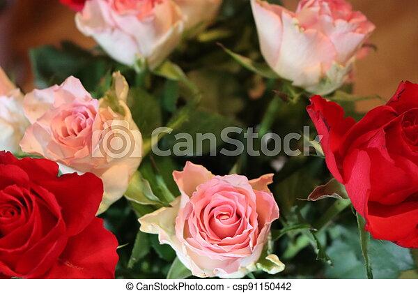 pink flower beautiful skewer-colored skewers natural leaves - csp91150442